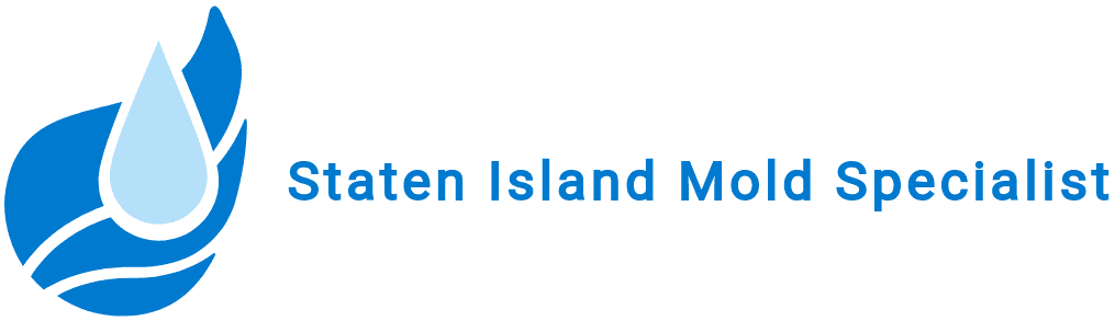 Staten Island Mold Specialist
